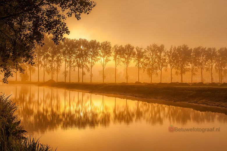 I love the Morninglight.............. - Sunrise in the Mist this morning