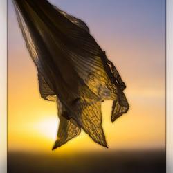 2018-01-22 zonsondergang door amaryllis - verkleind - 010
