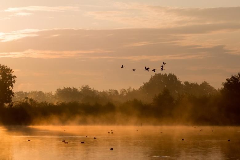 Mist en zonsopgang bij de Vilt