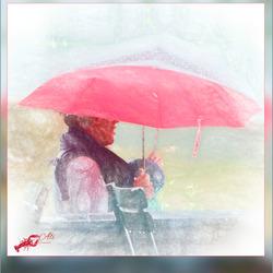 regen, steeds maar regen.............