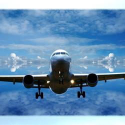 DSC_39696 Fly Away
