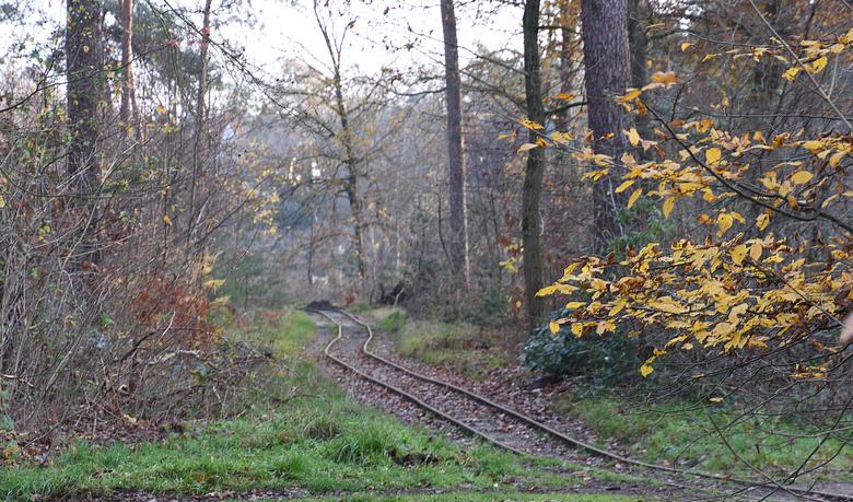 DSC_9514  Spoortje. - De rails liggen er nog.<br /> Waar vroeger het treintje met de karren met klei werden vervoerd en in de vormen in de oven tot s