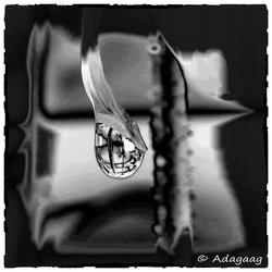 2016-07-22 regendruppel 001a1a zoom