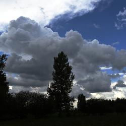 Donkere wolken boven Landgoed Groot Eiland ( Hulst)