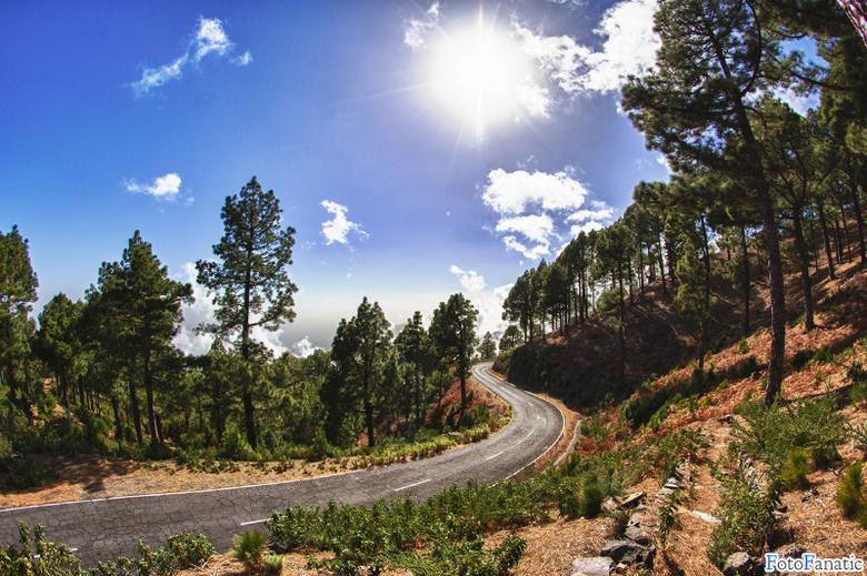 Lonely road through the mountains - De eenzame bergweg naar het &quot;dak&quot; van het eiland La Palma.<br /> <br /> EXIF klopt niet ivm analoge le