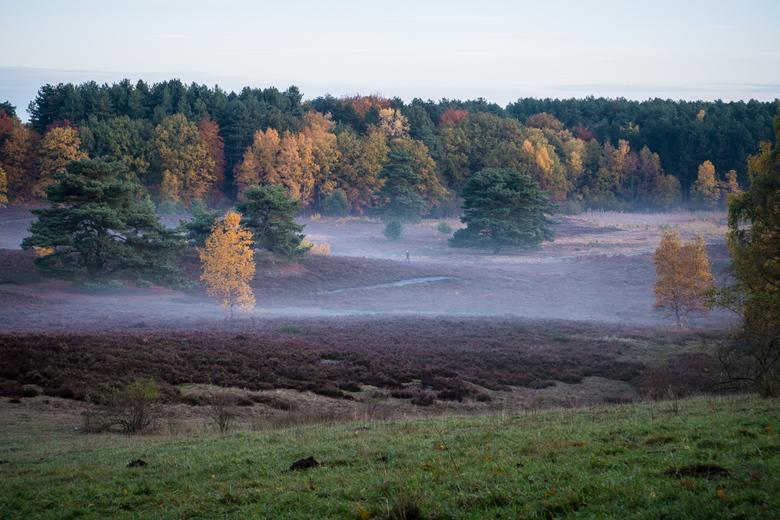 Ochtendnevel op de Brunssummerheide - Herfstochtend met nevel op de Brunssummerheide