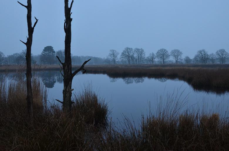 Weinterper Skar - vanochtend vroeg op pad geweest in een mooi klein natuurgebiedje, het Weinterper Skar.
