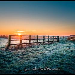 Koude Morgend