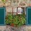 Italië 43