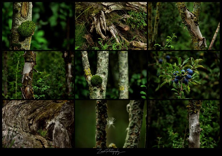 Natuurgroen -