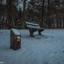 benkske in de sneeuw