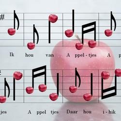 Bewerking: appel-muziek-bewerkingsopdracht.jpg