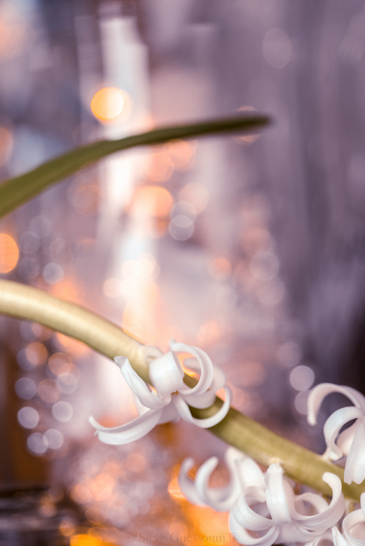 Sparkling  -