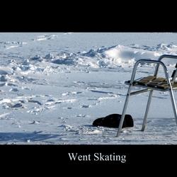 Went Skating...