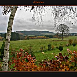 Herfst in de Ardennen 2