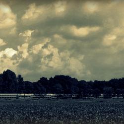 Enkeltje landschap