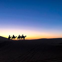 Tocht op de kameel - Merzouga woestijn, Marokko
