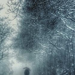 Wandelen in de sneeuwbuien.