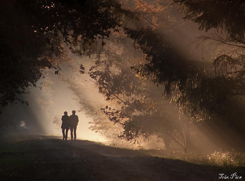 Zonnestralen.... - Licht in contact met mens en aarde.