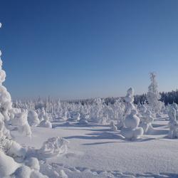 winter wonderland version two