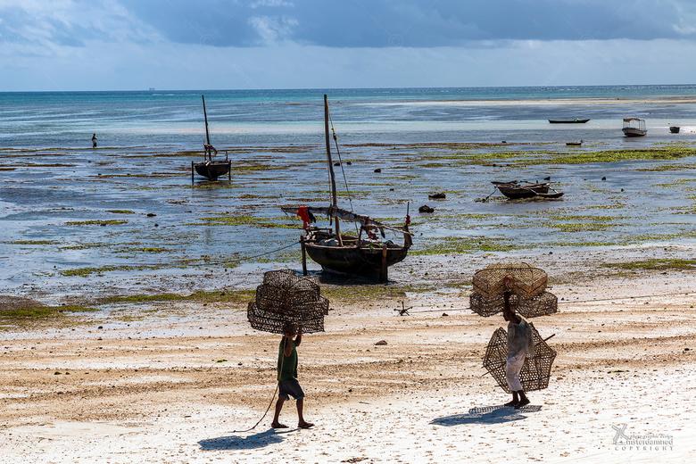 Tanzania - Het is eb in het afrikaanse Nungwi op het eiland Zanzibar... vissersboten vallen droog en vissers brengen nieuwe fuiken naar de boot terwij