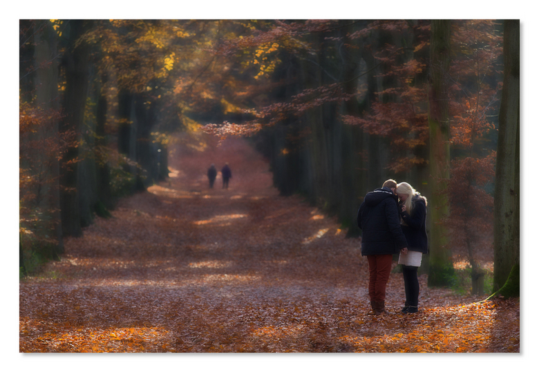 Onderonsje - Even terug naar de herfst.<br /> Bewerking in Photoshop met twee beelden voor een soft focus.