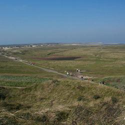 Natuurgebied Slufter op Texel I.