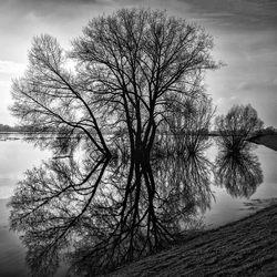 spiegeling