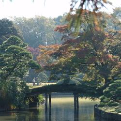 Tuin Japan
