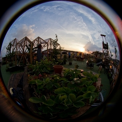 roofgarden ii
