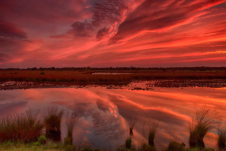 Under a blood red sky! - Afgelopen maandagavond genoten van een schitterende zonsondergang in mijn &quot;achtertuin&quot; de Engbertsdijksvenen.<br />