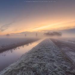 Mistige polder