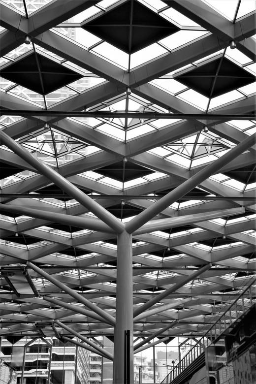 het buizen dak  - Den Haag CS<br /> gr. AJ62