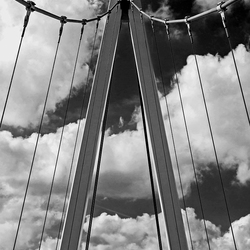 Dafne Schippersbrug 3