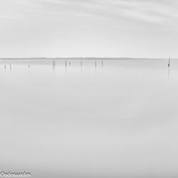 Palen in een meer