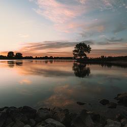 Roze reflectie