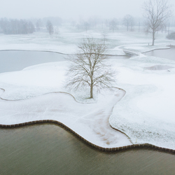 Fresh layer of snow