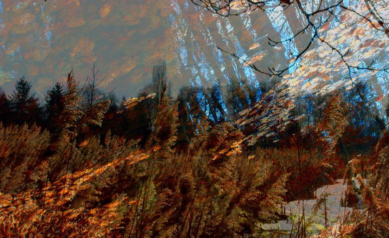 Landscapes: wysiwyg - plaatje uit: landscapes