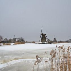 Kinderdijk in de winter