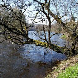 rivieroever
