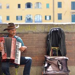 de man met een accordion