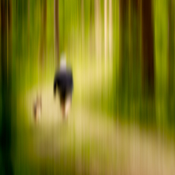 wandelen in het lentebos