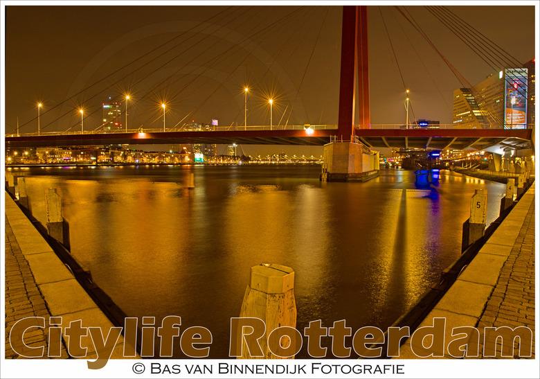 Citylife Rotterdam - Willemsbrug - Citylife Rotterdam - Willemsbrug