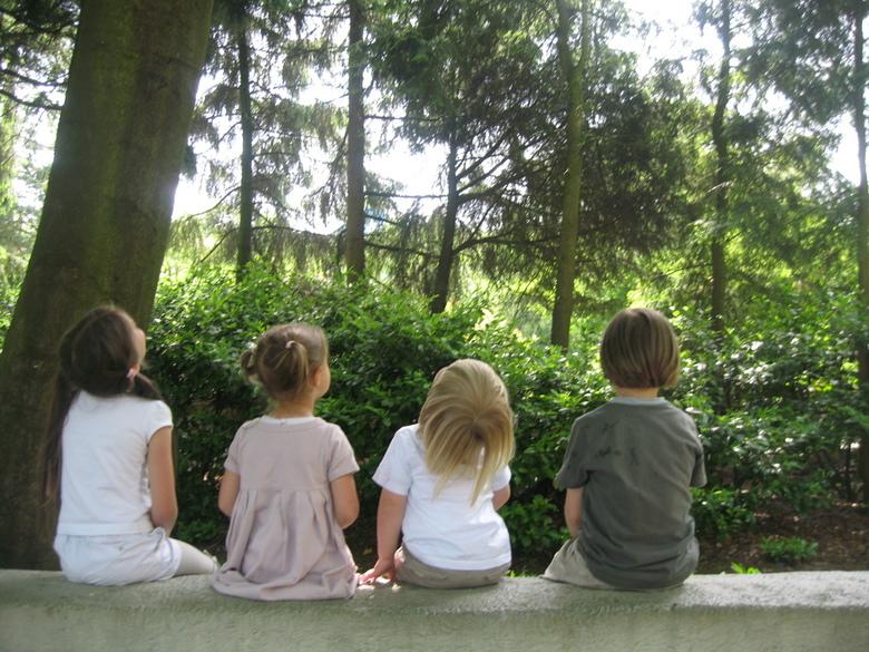 Kinderen - 4 kleine kleutertjes op een muurtje in de Efteling