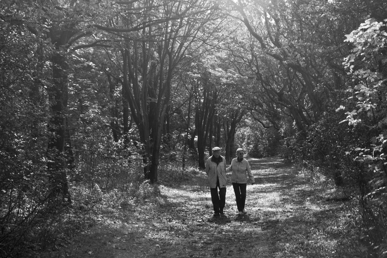 4 ever young - Mooie dag in de bossen van Heiloo.<br /> Een ouder paartje, still in love.....