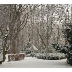 Wilhelminapark in de sneeuw