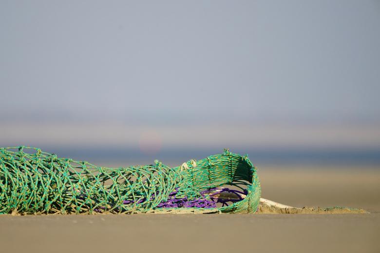 Zon, Zee en......Net - Paars en groen zijn de kleuren die het met doen.