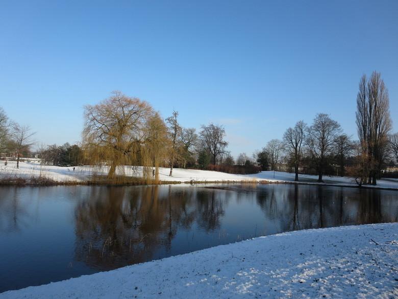 snow saturday - gemaakt met mijn camera (in een park bij de stad in de buurt) en niet bewerkt. ik wil de sneeuw weer terug maar ik ik mis de zomer ook