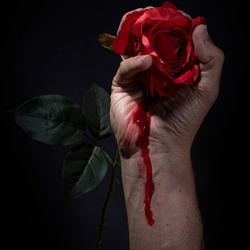 Bloedroos