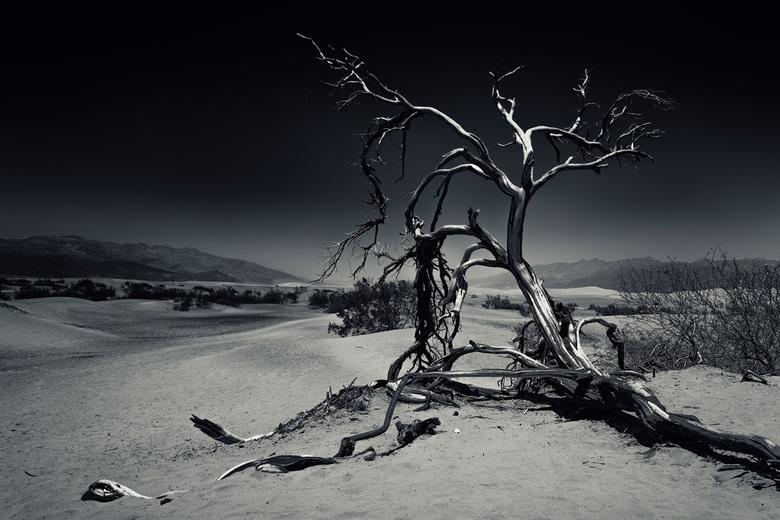 Death Valley - Hoi Allemaal! Eindelijk weer tijd om weer wat foto&#039;s te gaan plaatsen. <br /> <br /> Een paar weken terug zijn we in het mooie z